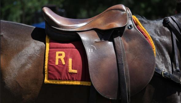 RLsaddle